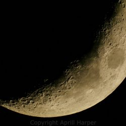 Lunar mosaic by Aprill Harper